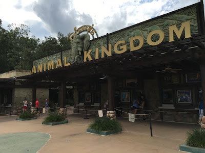 Our #AwakenSummer Experience at Disney's Animal Kingdom Theme Park
