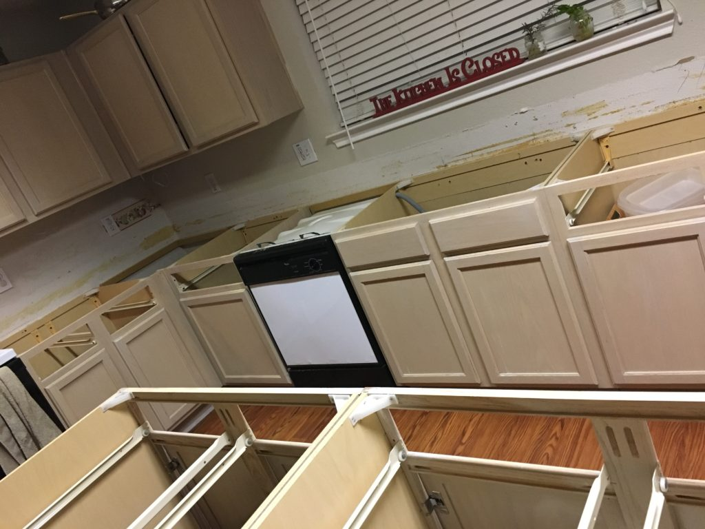 Operation Kitchen Remodel – Part 2