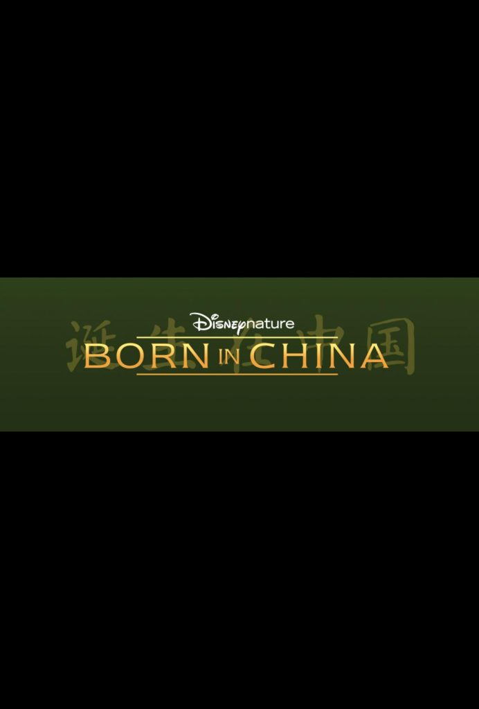 Celebrate National Panda Day with Disneynature's BORN IN CHINA today!