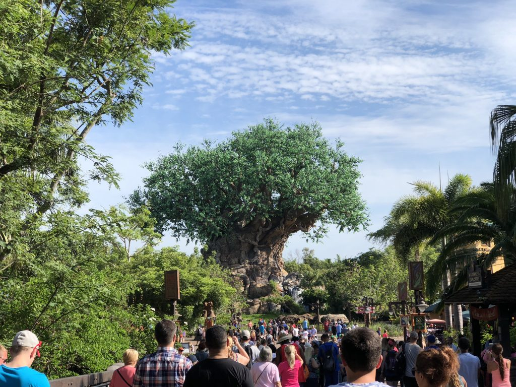 1 Day To Spare? Go To Disney's Animal Kingdom Theme Park!